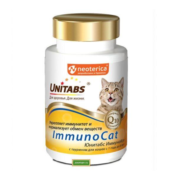 Витамины для кошек: для иммунитета, для кастрированных котов, какие лучше, как давать, дозировка